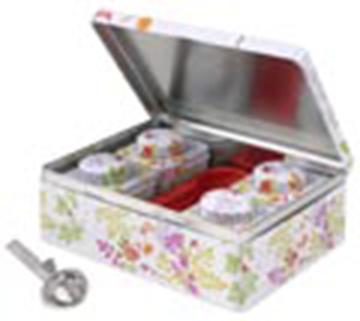 Imagen de Caja Tea Taster Farandole + infusor